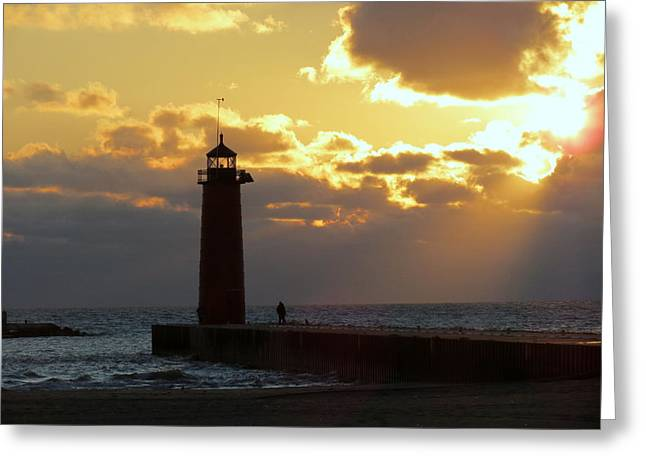 Paint Photograph Greeting Cards - Early Morning Stranger Greeting Card by Kay Novy