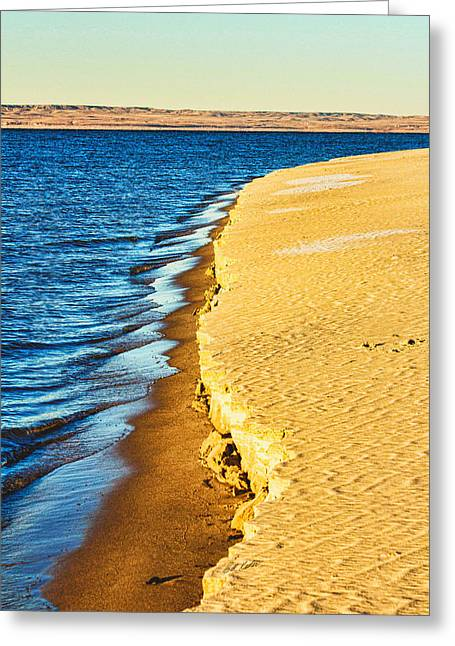 Bill Kesler Greeting Cards - Early Morning Walk Greeting Card by Bill Kesler