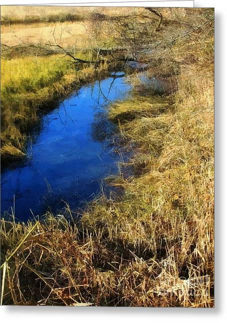 Salt Marsh. New England Greeting Cards - Early on a Frosty Morning Greeting Card by RC DeWinter