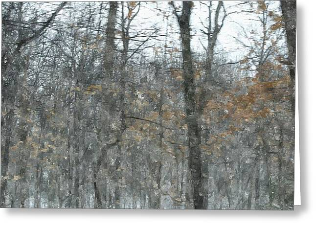 Entryway Paintings Greeting Cards - Early Spring Fog In Manistee National Forrest  Greeting Card by Rosemarie E Seppala