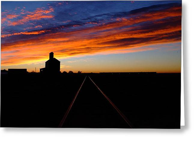 Farmlife Greeting Cards - Early to Rise.. Greeting Card by Al  Swasey