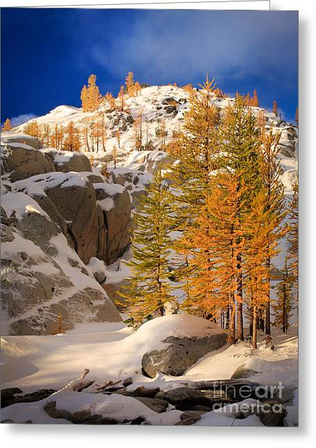 Alpine Greeting Cards - Early Winter Greeting Card by Inge Johnsson