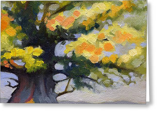 Earlysville Virginia Ancient White Oak Greeting Card by Catherine Twomey