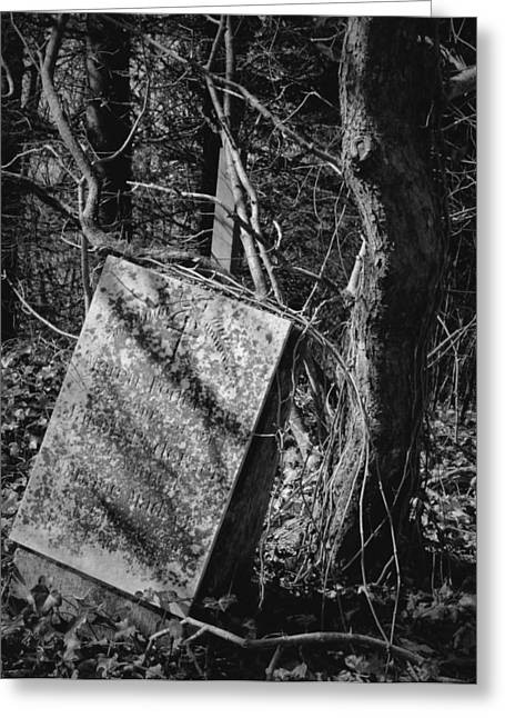 Headstones Greeting Cards - Earth To Earth Greeting Card by Odd Jeppesen
