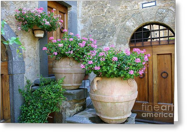 Entrance Door Greeting Cards - Earthen Pot And Door Greeting Card by Holly C. Freeman