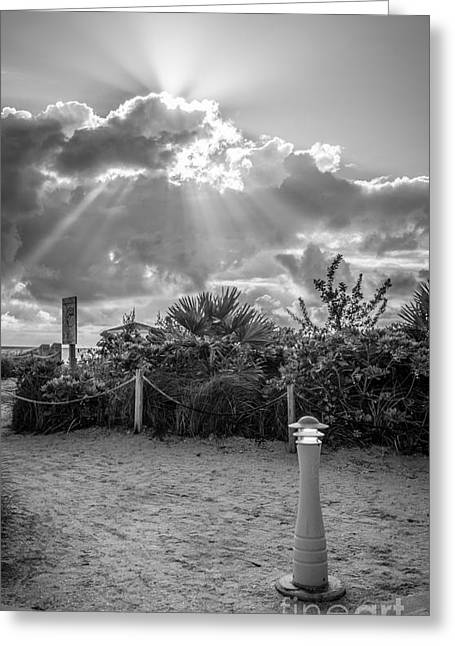 Heavenly Sunrise Greeting Cards - Earthly Light and Heavenly Light - Black and White Greeting Card by Ian Monk