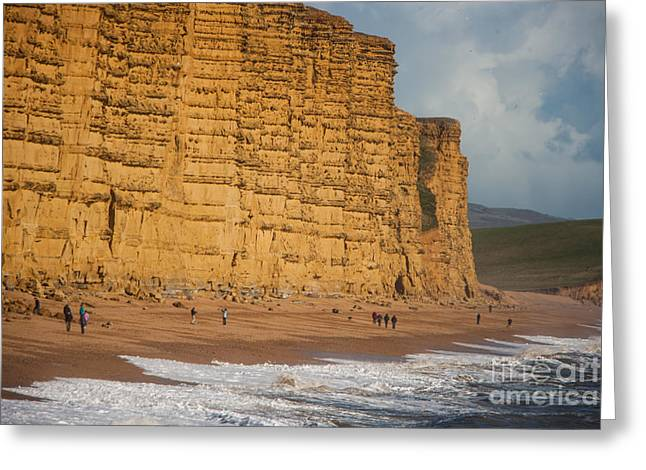 Making Beer Greeting Cards - East Cliff  Greeting Card by Daniel  Bristow