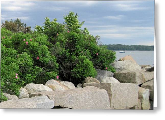 Maine Shore Greeting Cards - East End Boat Launch Greeting Card by Patricia Sundik