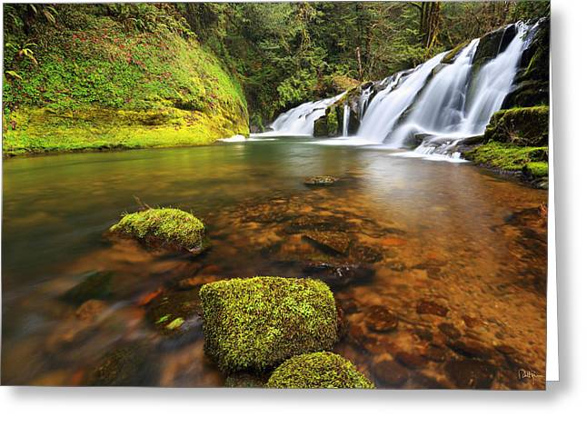 Mossy Greeting Cards - East Fork Coquille Falls Greeting Card by Robert Bynum