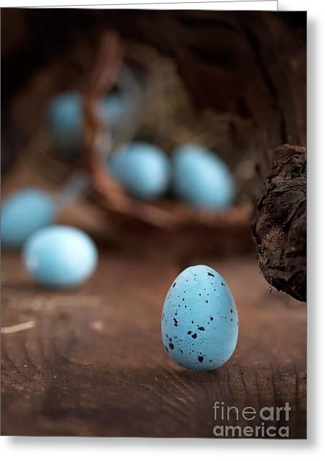 Mythja Greeting Cards - Easter blue eggs Greeting Card by Mythja  Photography