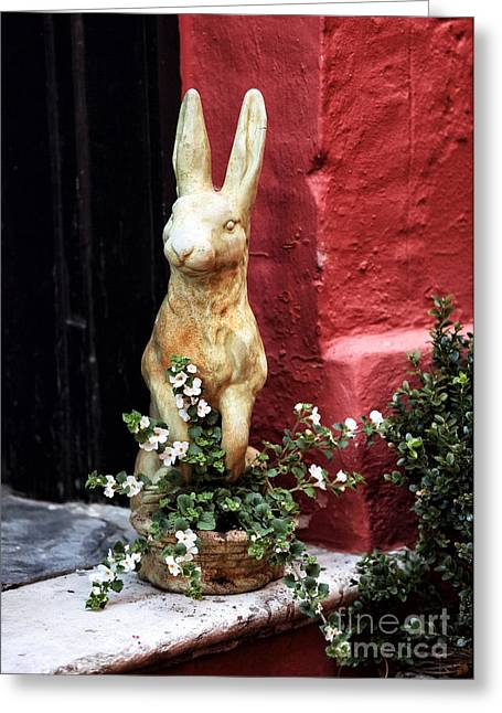Philadelphia Alley Greeting Cards - Easter Bunny Greeting Card by John Rizzuto