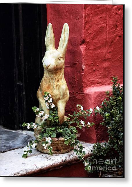 Old School House Greeting Cards - Easter Bunny Greeting Card by John Rizzuto