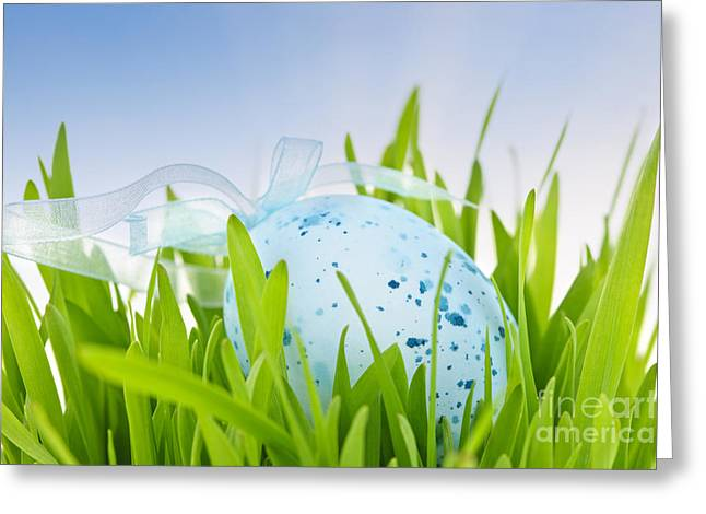 Coloured Greeting Cards - Easter egg in grass Greeting Card by Elena Elisseeva