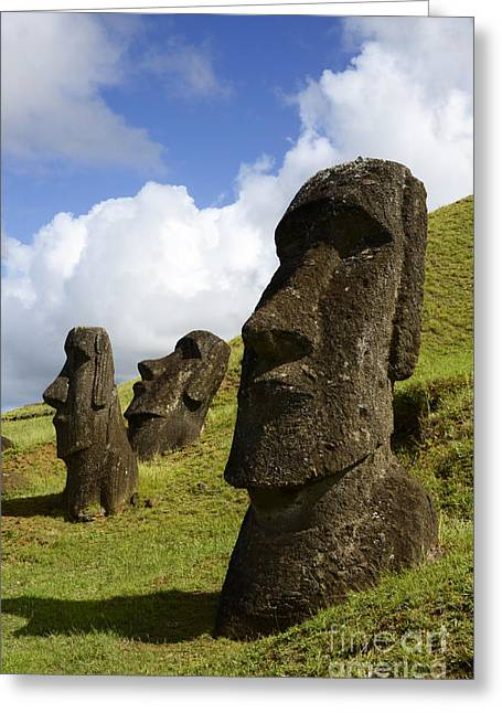 Moai Greeting Cards - Easter Island 2 Greeting Card by Bob Christopher