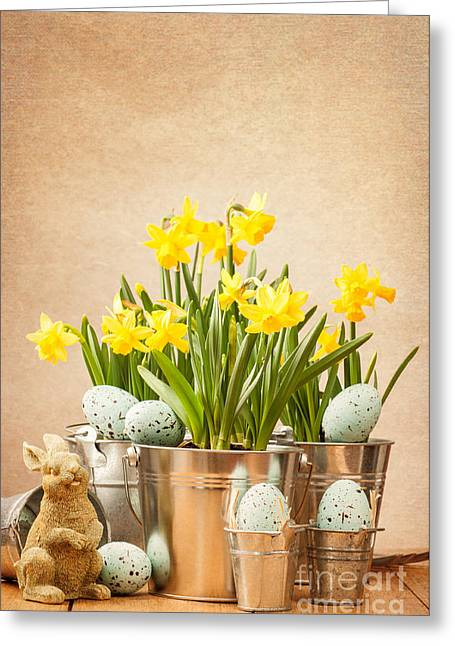 Flower Setting Greeting Cards - Easter Setting Greeting Card by Amanda And Christopher Elwell