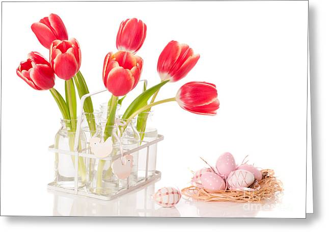 Easter Tulips Greeting Card by Amanda And Christopher Elwell