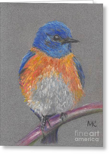 Michelle Pastels Greeting Cards - Eastern Bluebird Greeting Card by Michelle Reeve