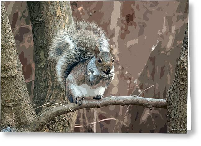 Sciurus Carolinensis Digital Art Greeting Cards - Eastern gray squirrel Greeting Card by Stefan Troberg