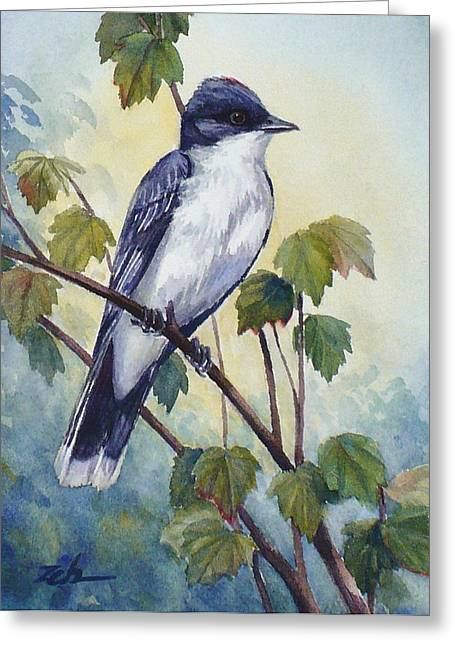 Eastern Kingbird Greeting Cards - Eastern Kingbird Greeting Card by Janet  Zeh