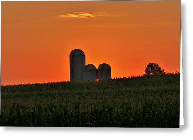 Cornfield Greeting Cards - Eastern Promises Greeting Card by Robert Geary