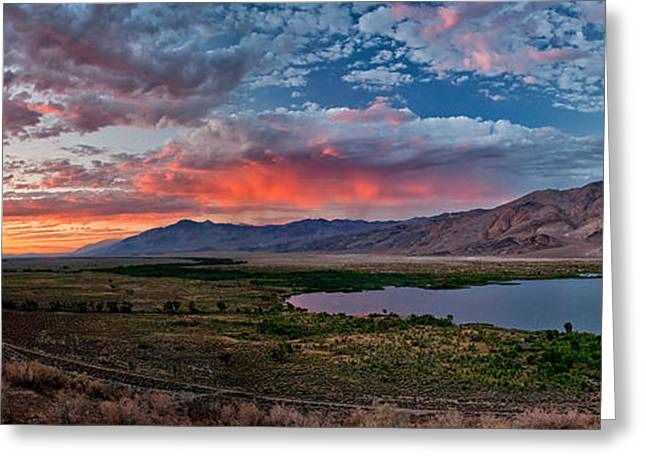 Blue Mountains Red Greeting Cards - Eastern Sierra Sunset Greeting Card by Cat Connor