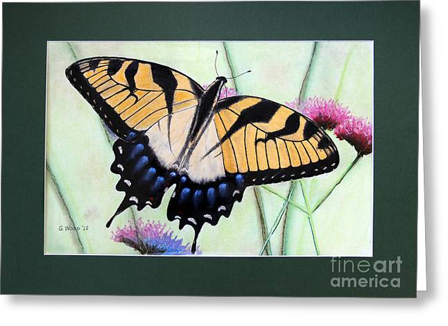 Antenna Pastels Greeting Cards - Eastern Tiger Swallowtail Butterfly by George Wood Greeting Card by Karen Adams