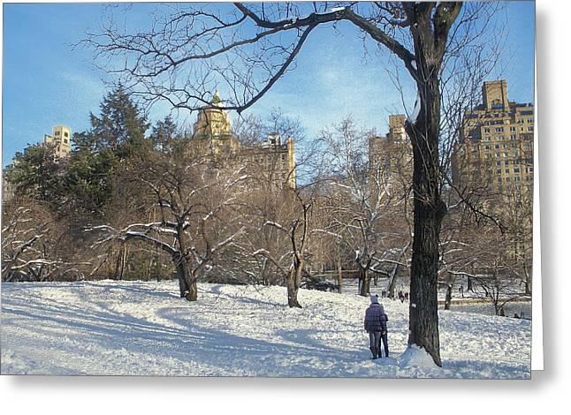 Reflection Of Sun In Clouds Greeting Cards - Eastside View From Central Park Greeting Card by Muriel Levison Goodwin