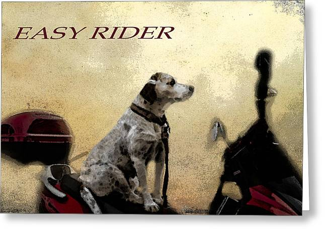 Kauai Dog Greeting Cards - Easy Rider Greeting Card by Belinda Greb