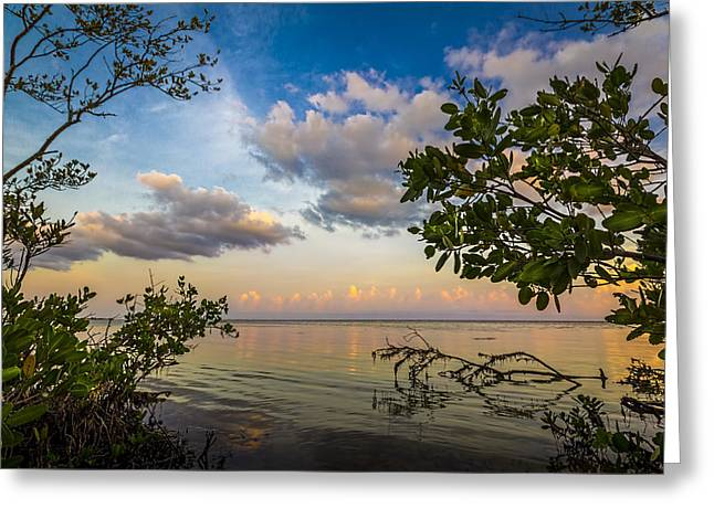Ebb And Flow Greeting Card by Marvin Spates