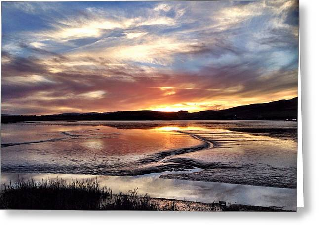 Pablo Greeting Cards - Ebb Tide at Sunset Greeting Card by Tracy J Thomas