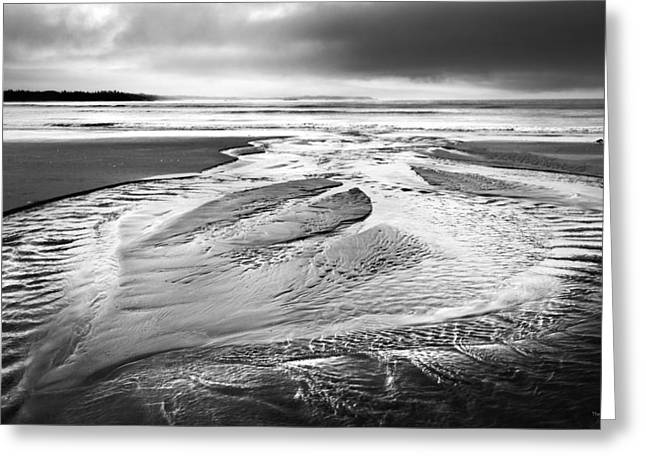Canadian Photographer Greeting Cards - Ebb Tide Greeting Card by Theresa Tahara