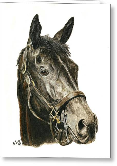 Race Horse Greeting Cards - Eblouissante Greeting Card by Pat DeLong