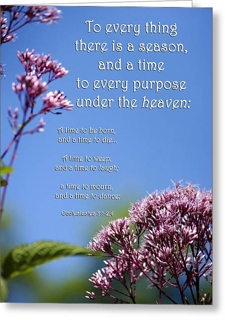 Ecclesiastes 3-1 Greeting Card by Christina Rollo