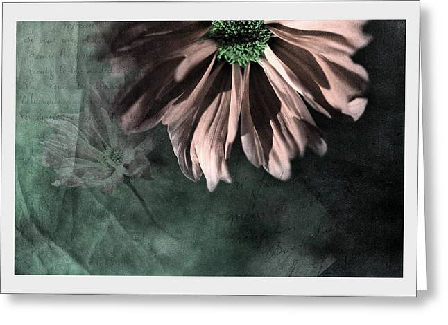 Pink Flower Prints Mixed Media Greeting Cards - Echoes Greeting Card by Bonnie Bruno