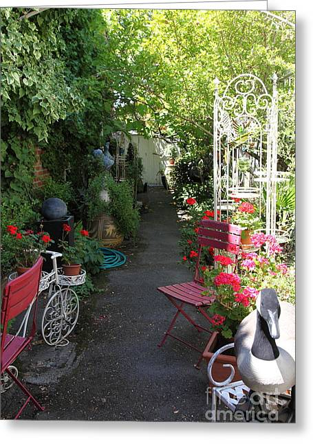 Bay Area Flowers Greeting Cards - Eclectic Alley Garden In Downtown Sonoma California 5D24467 Greeting Card by Wingsdomain Art and Photography
