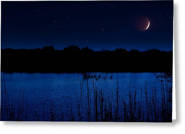 Beauty Mark Greeting Cards - Florida Everglades Lunar Eclipse Greeting Card by Mark Andrew Thomas