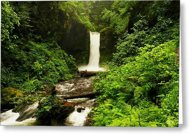Falling Water Creek Greeting Cards - Ecola Falls  Greeting Card by Jeff  Swan