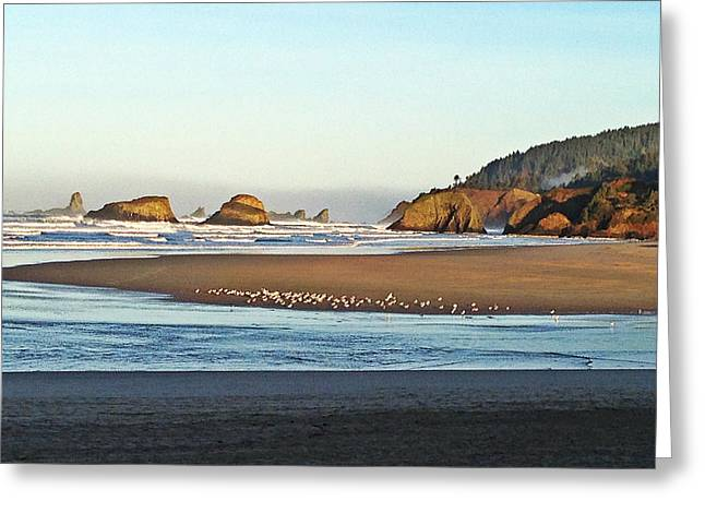 Ecola Point Greeting Card by Zoltan Spitzer