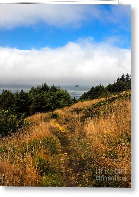 Seacape Greeting Cards - Ecola Trails Greeting Card by Robert Bales
