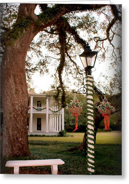 Restored Plantation Greeting Cards - Eden State Park Greeting Card by Debra Forand