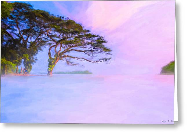 Limitless Greeting Cards - Edge Of A Dream - Lake Nicaragua Landscape Greeting Card by Mark Tisdale
