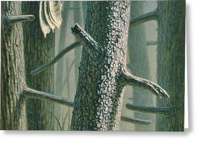 Edge of the Burn Greeting Card by Paul Krapf