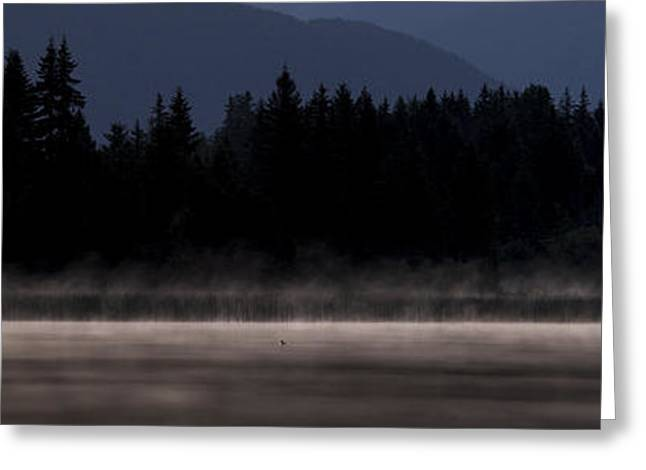 Ducks Lakes Greeting Cards - Edge of the Lake Greeting Card by Aaron S Bedell