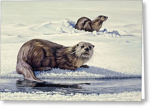 Otter Greeting Cards - Edge of the Lake Greeting Card by Paul Krapf