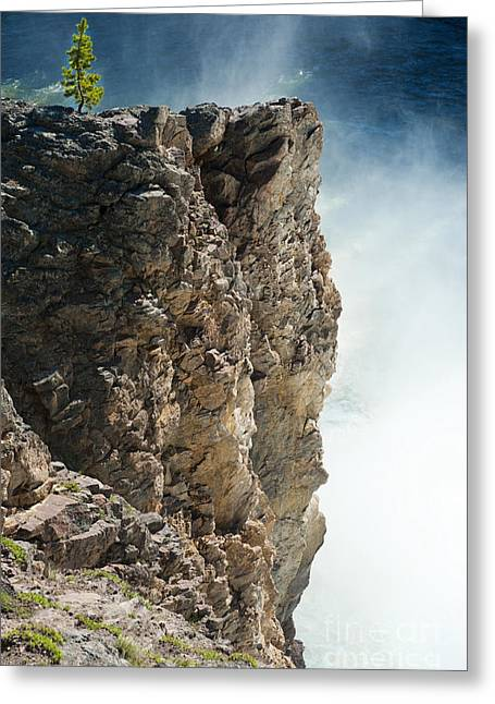 Cliffs And Water Greeting Cards - Edge of the Upper Falls Greeting Card by Sandra Bronstein