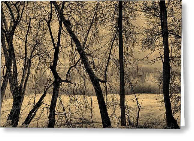Edge of Winter Greeting Card by Bob Orsillo