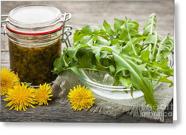 Green Leafs Greeting Cards - Edible dandelions and dandelion jam Greeting Card by Elena Elisseeva