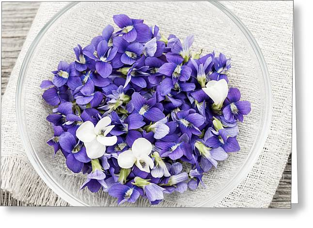 Square Format Greeting Cards - Edible violets  Greeting Card by Elena Elisseeva