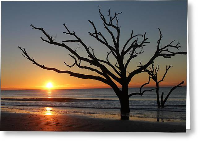 Beach Photography Greeting Cards - Edisto Island Sunrise Greeting Card by Suzette Phillips