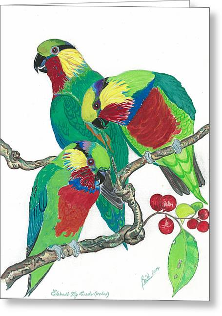 Edward's Fig Parrots Greeting Card by Anthony Purification
